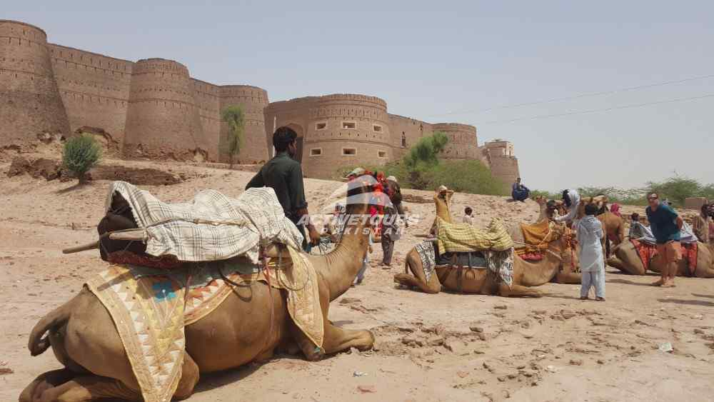 Cholistan Car Rally, cheap packages for Cholistan Desert Camping