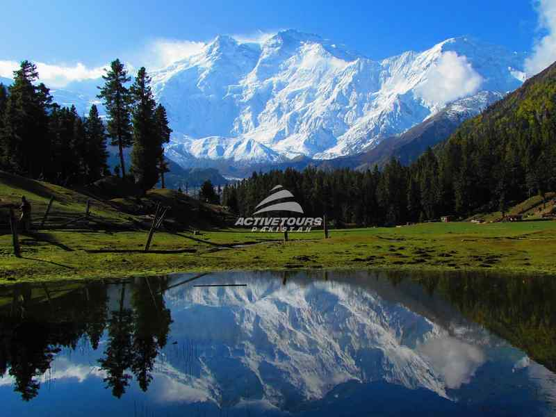 Fairy-Meadow-Nanga-Parbat-Base-Camp-Trek-featured