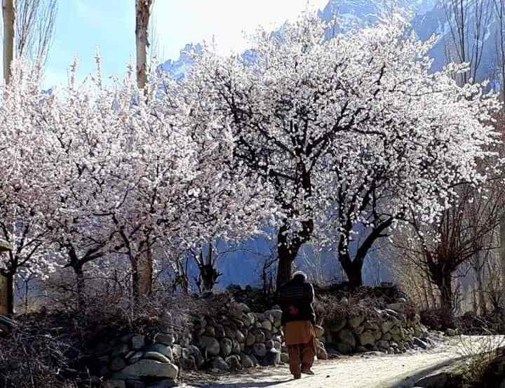 Experience real life in Hunza