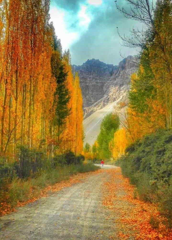 Reliable Tour Company from Hunza Valley Pakistan